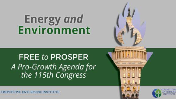 Agenda for Congress_Energy and Environmentv2